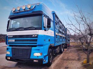 PEZZAIOLI livestock truck + livestock trailer